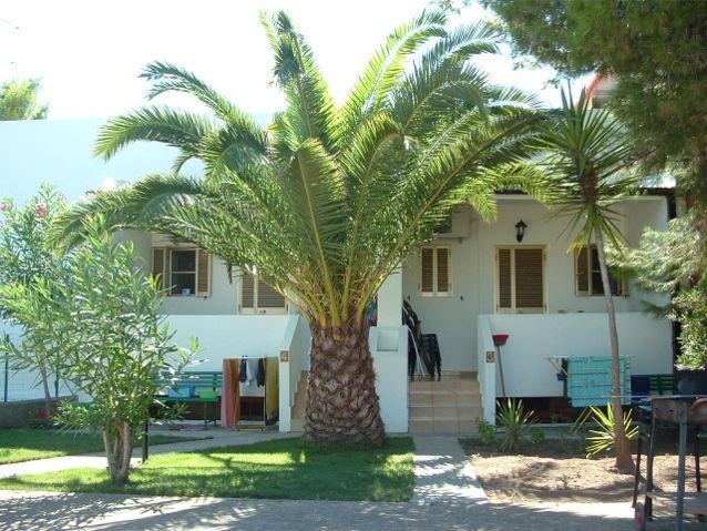 casa vacanze del residence maddalena tra vieste e peschici, in puglia nel gargano